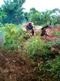 Les transporteurs sur la route Abiangama